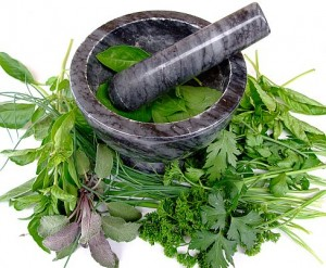 There are several types of herbs that improve digestion