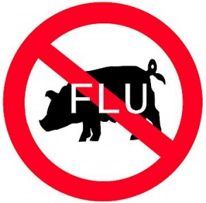 H1N1 virus can be transmitted from pigs to humans