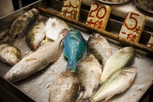 Eating fish is recommended for all age groups.
